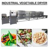 Automatic Mesh Belt Industrial Vegetable Dryer With Cheap Price
