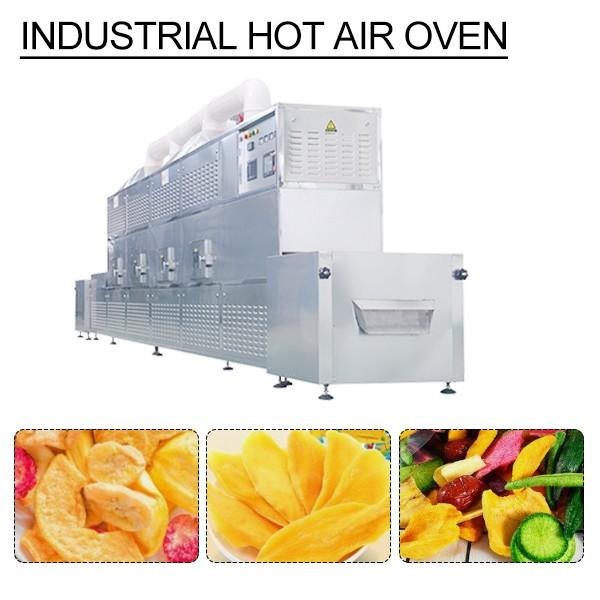 Automatic Eco-friendly Multifunction Industrial Hot Air Oven,Microwave Drying Equipment #1 image