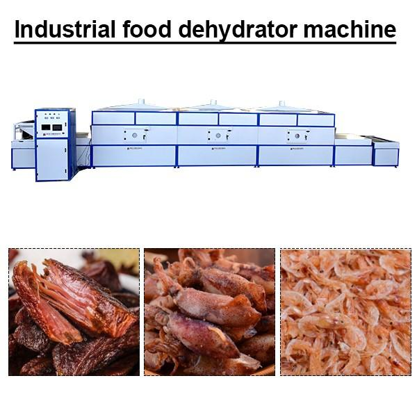 High Efficiency Industrial Food Dehydrator Machine With Small Footprint,long Life Time #1 image