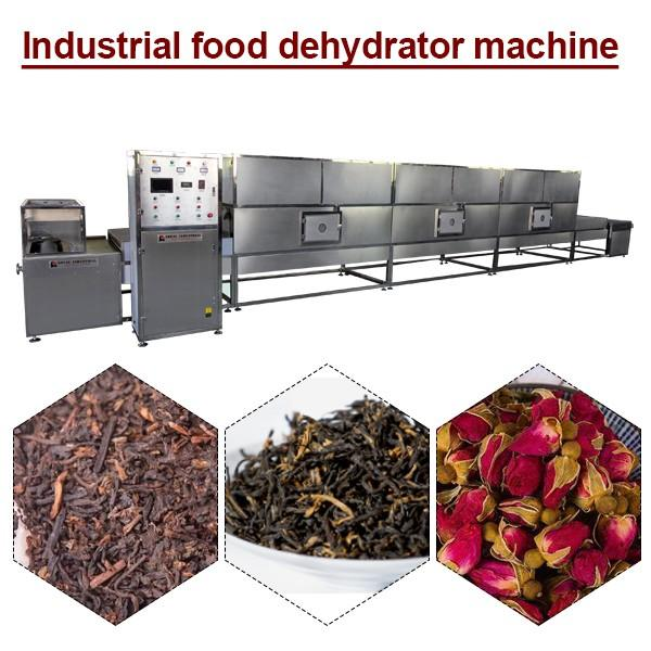 Low Consumption Industrial Food Dehydrator Machine With Long Life,Ce Certification #1 image