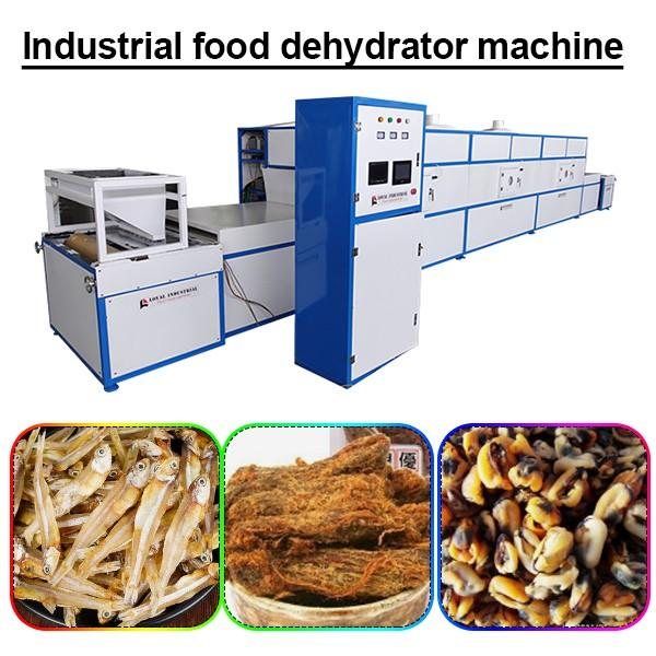 380v/50hz Continuous Industrial Food Dehydrator Machine With Multi Function #1 image